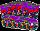 Thumbnail PLR For Newbies Video Series - Make Money From Your Pc!